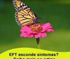 EFT esconde problemas sérios?