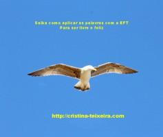 Como aplicar a EFT 2 – como usar as palavras