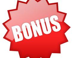 bonus 2