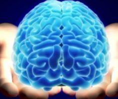 Como melhorar as moléculas da emoção e a sua prosperidade