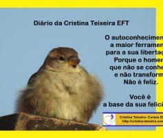 Diário da Cristina EFT-novo espaço no meu blog